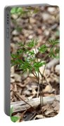 Black Cohosh Portable Battery Charger