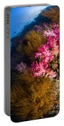 Black Coral And Soft Coral Seascape Portable Battery Charger