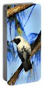 Black Faced Cuckoo Shrike V3 Portable Battery Charger