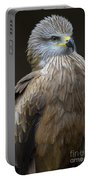 Black Kite 4 Portable Battery Charger