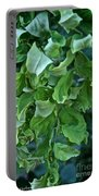 Black Locust Portable Battery Charger