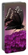 Black Swallowtail 1 Portable Battery Charger