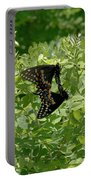 Black Swallowtails Mating Portable Battery Charger