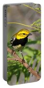 Black-throated Green Warbler Portable Battery Charger