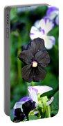 Black Violet Portable Battery Charger