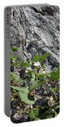 Blackberry On The Rock 04 Portable Battery Charger