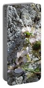 Blackberry On The Rock Square Format Portable Battery Charger