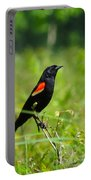 Blackbird Portable Battery Charger
