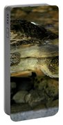Blandings Turtle Portable Battery Charger