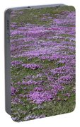 Blank Colonial Tombstone Amidst Graveyard Phlox Portable Battery Charger