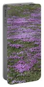 Blank Colonial Tombstone Amidst Graveyard Phlox Portable Battery Charger by John Stephens