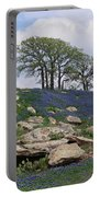Blanketed In Blue Portable Battery Charger