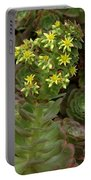 Blooming Succulents Portable Battery Charger