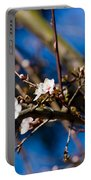Blooming Tree With White Flowers Portable Battery Charger