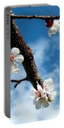 Blossoming Apricot Portable Battery Charger