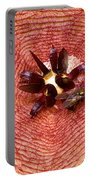 Blowflies On Stapelia Portable Battery Charger