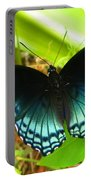 Blue Butterfly I Portable Battery Charger
