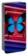 Blue Butterfly In Pink Box Portable Battery Charger