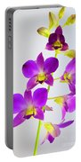 Blue Charm X Aridang Blue Orchid - 1 Portable Battery Charger