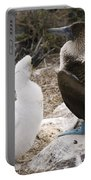 Blue-footed Booby Mother And Chick Portable Battery Charger
