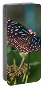 Blue Glassy Tiger Butterfly Portable Battery Charger