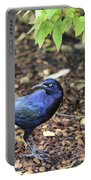 Blue Grackle Portable Battery Charger