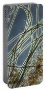 Blue-green Algae Portable Battery Charger