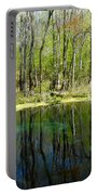 Blue Hole Springs Florida Portable Battery Charger
