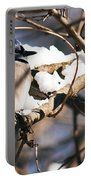 Blue Jay Staying Warm Portable Battery Charger