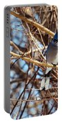 Blue Jay Thinking Portable Battery Charger