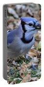 Blue Jay With A Piece Of Corn In Its Mouth Portable Battery Charger