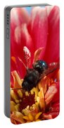 Blue Orchard Bee Portable Battery Charger by Scott Bauer