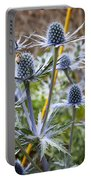 Blue Stem Sea Holly Portable Battery Charger