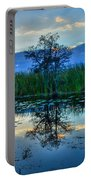 Blue Sunset Portable Battery Charger