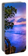Blue Tide Portable Battery Charger