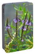 Blue Vervain - Verbena Hastata Portable Battery Charger