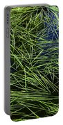 Blue Water Green Grass Glacier National Park Portable Battery Charger