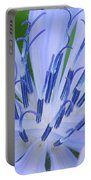 Blue Wildflower Portable Battery Charger