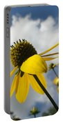 Blue Yeller Portable Battery Charger
