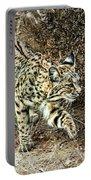 Bobcat Stalking Prey Portable Battery Charger