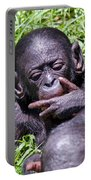 Bonobo 2 Portable Battery Charger