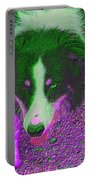 Border Collie Stare In Colors Portable Battery Charger by Smilin Eyes  Treasures