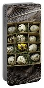 Box Of Quail Eggs Portable Battery Charger