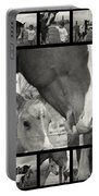 Boy Meets Horse Portable Battery Charger