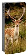 Wildlife Fallow Deer Stag Portable Battery Charger