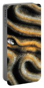 Brain Coral Portable Battery Charger