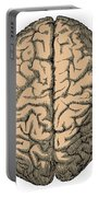 Brain Portable Battery Charger
