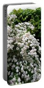 Bridal Veil Blossoms Portable Battery Charger
