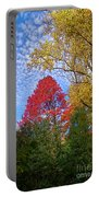 Bright Autumn Color Portable Battery Charger
