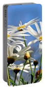 Bright Daisies Portable Battery Charger